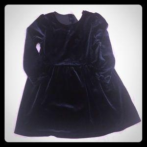 Gap New with Tags Navy Velvet Dress